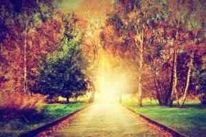 voyance-au-feminin-ch-article-blog-incarnation-ame-chemin-de-vie