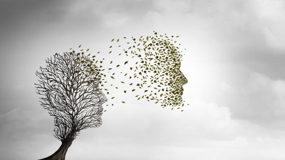Tout ce que vous devez savoir sur la réincarnation